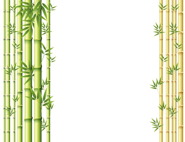 Background design with green and golden bamboo stems