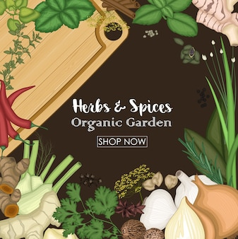 Background design with herbs and spices