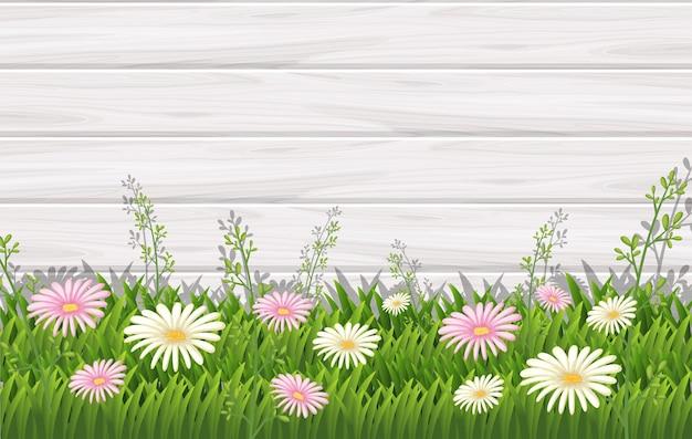 흰색과 분홍색 꽃과 배경 디자인