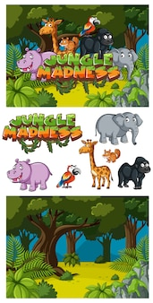 Background design for word jungle madness with animals in forest