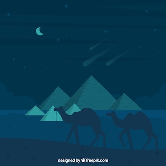 Background of egypt pyramids night landscape with caravan of camels