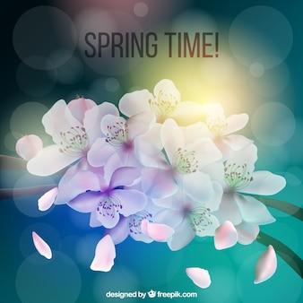 봄 시간에 대한 배경