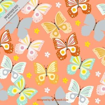 背景フル蝶