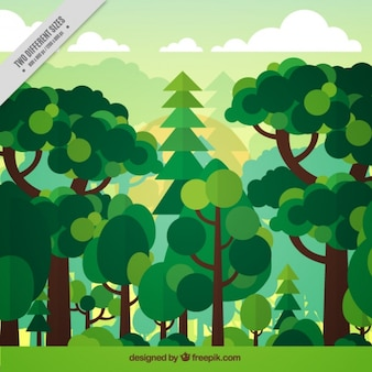 Background of green forest in flat design