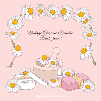 Background of hand drawn daisies with natural products