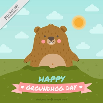 Background of lovely groundhog with blush