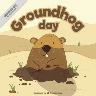 Background of nice groundhog