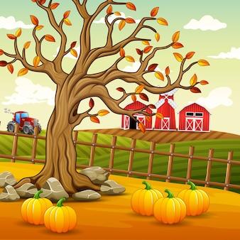 Фон осеннего пейзажа фермы