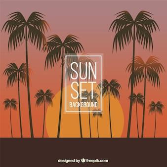 Фон красивый закат с пальмами