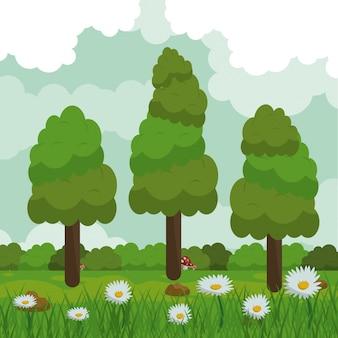 데이지 꽃과 숲 풍경 필드의 배경