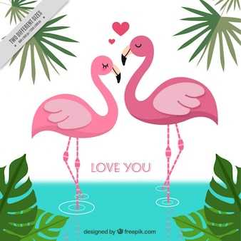 Background of flamingoes in love