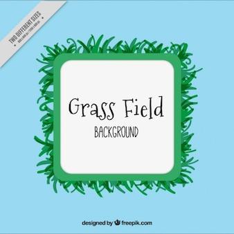 Фон травы кадра