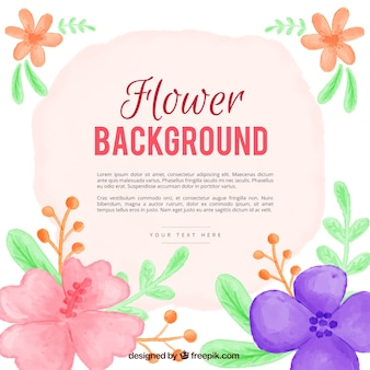 Background of hand painted flowers