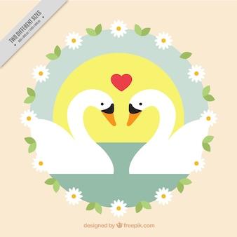 Background of loving swans