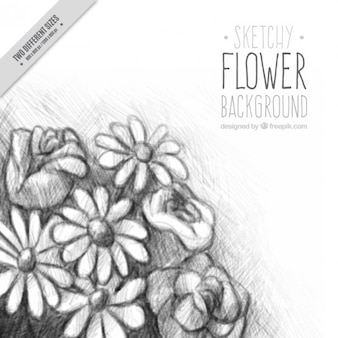 Background of pretty hand drawn flowers