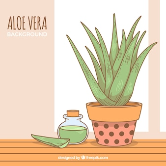 Background of pretty hand-drawn aloe vera flowerpot