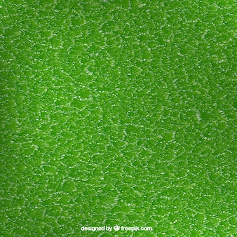 Background of realistic grass texture
