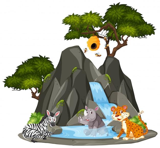 滝のそばの動物の背景シーン