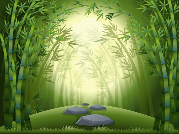 Фоновая сцена с бамбуковым лесом