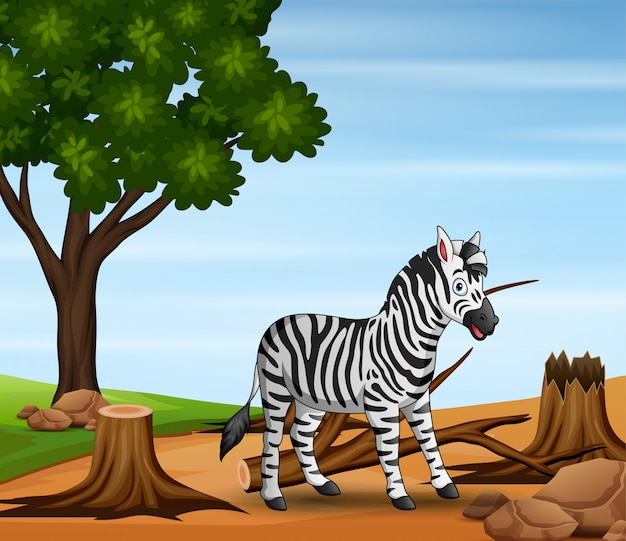 Background scene with deforestation and zebra