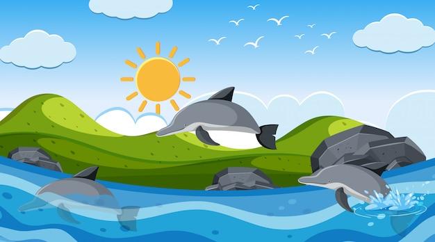 바다에서 돌고래 수영 배경 장면