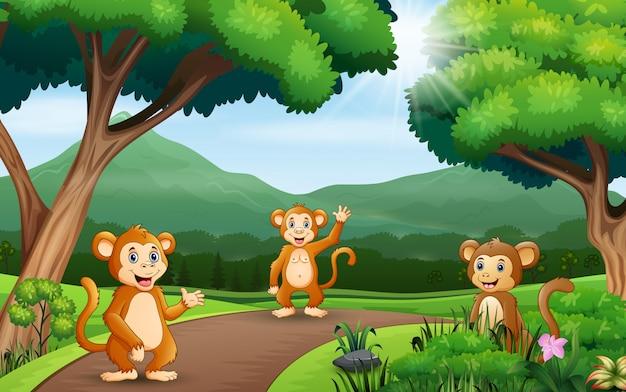 자연에서 세 원숭이와 배경 장면