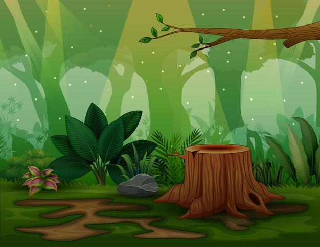Background scene with tree stump in the forest