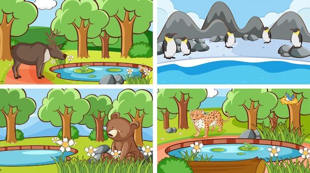 野生の動物の背景シーン