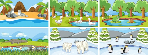 야생 동물의 배경 장면