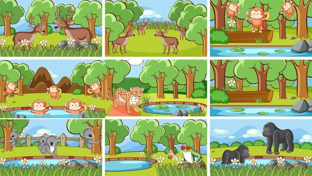 Фоновые сцены с животными в дикой природе