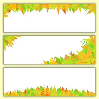 Background set with autumn leaves