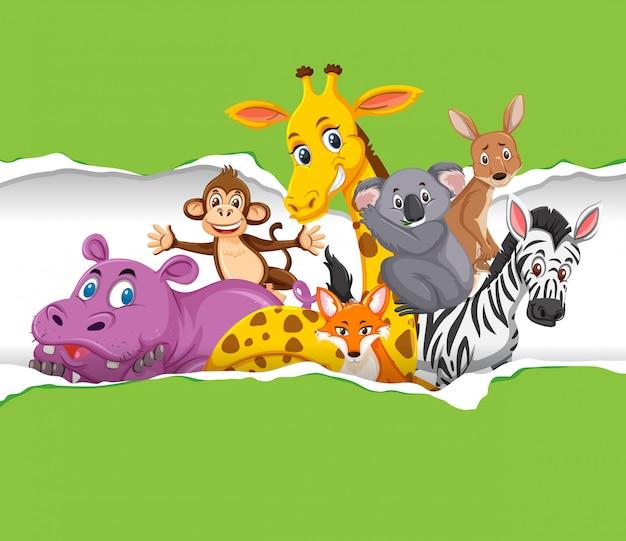 Фон шаблон дизайна с дикими животными на зеленой бумаге