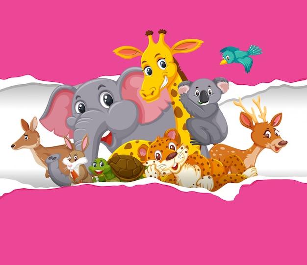 ピンクの紙の上の野生動物と背景テンプレートデザイン
