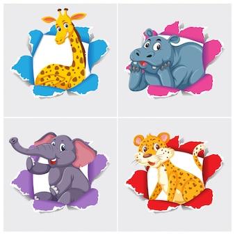 Background template design with wild animals
