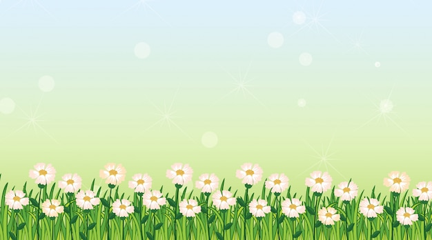 Background  template with green grass and flowers