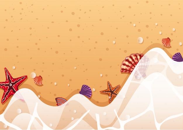 海岸にヒトデと貝の背景テンプレート