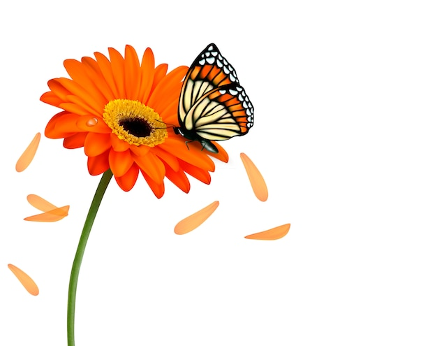 Background with beautiful flower with butterfly.