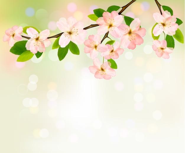 봄 꽃이 만발한 나무 브런치와 배경