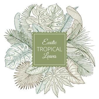 さまざまなエキゾチックな熱帯の葉とジャングルのヤシの背景。手描きイラスト。エキゾチックな熱帯植物のヤシ、花のジャングルの葉