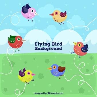 Sfondo con uccelli volanti piatte