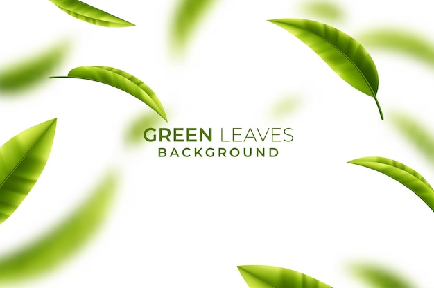 Background with green tea leaves in motion on white