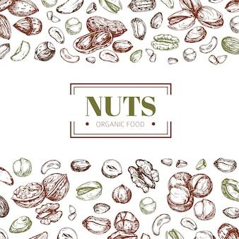 견과류와 배경입니다. 캐슈와 호두, 피스타치오와 헤이즐넛 유기농 식품 벡터 포스터 템플릿