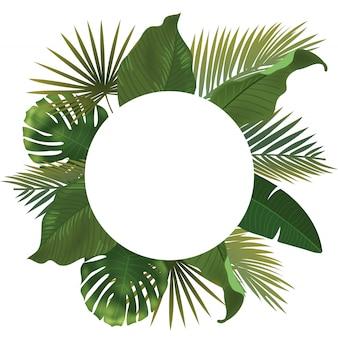白い背景の上の現実的な緑のヤシの葉の枝との背景。横たわって、トップビュー