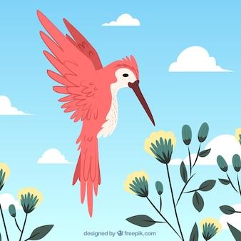 赤い鳥と花の背景