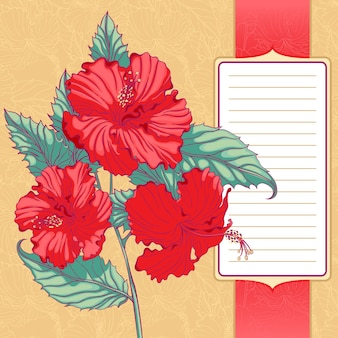 Background with red hibiscus with frame for text