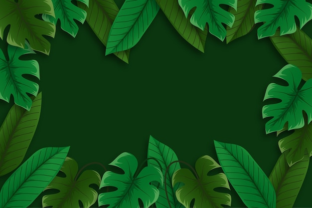 Background with tropical leaves concept