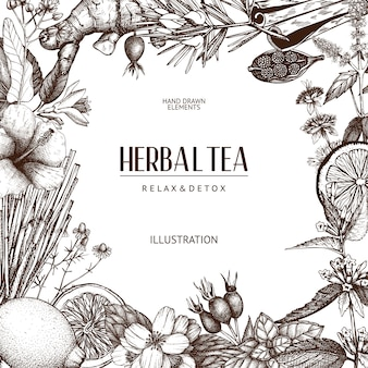 Background with vintage tea sketch. sketched herbs, fruits, spice template