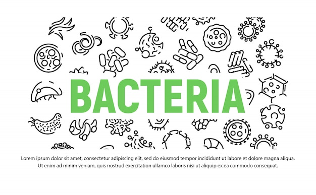 Bacteria icon set in outline style
