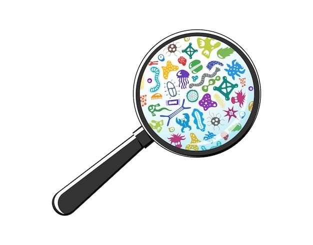 돋보기를 통해 박테리아 미생물입니다. 회춘 유리, 돋보기 아래 박테리아와 세균, 미생물, 박테리아, 바이러스, 곰팡이, 원생동물. 벡터 다채로운 그림