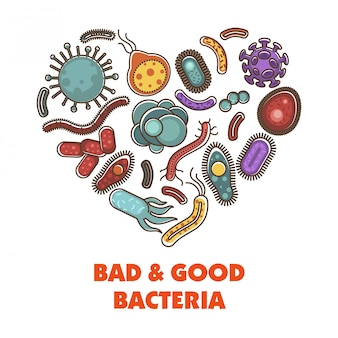 Bad and good bacteria poster with microelements in heart